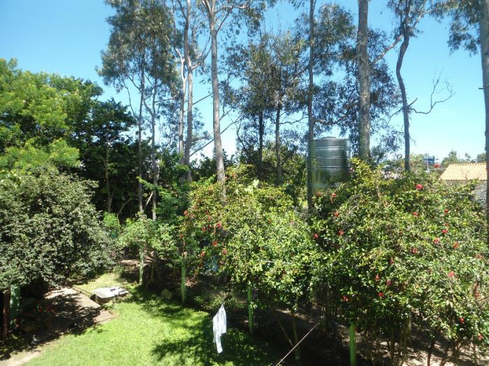 jardim ipe imobiliaria: Imóveis – Chácara Bauru – Jardim dos Ipês – Aparecida de Goiânia
